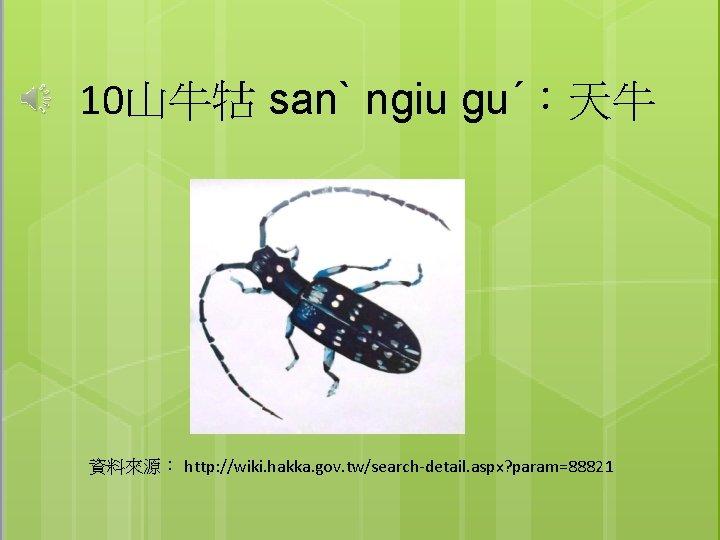 10山牛牯 sanˋ ngiu guˊ:天牛 資料來源: http: //wiki. hakka. gov. tw/search-detail. aspx? param=88821