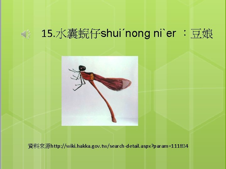 15. 水囊蜺仔shuiˊnong niˋer :豆娘 資料來源http: //wiki. hakka. gov. tw/search-detail. aspx? param=111834