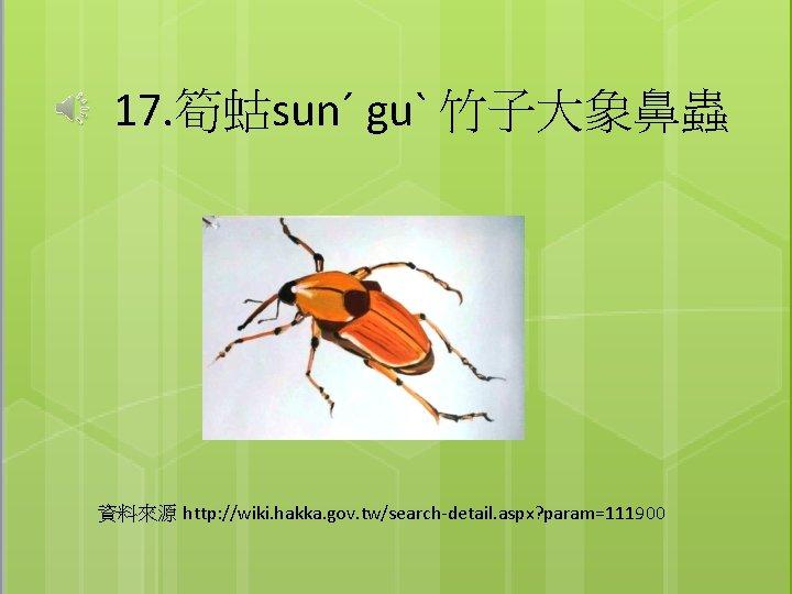 17. 筍蛄sunˊ guˋ 竹子大象鼻蟲 資料來源 http: //wiki. hakka. gov. tw/search-detail. aspx? param=111900