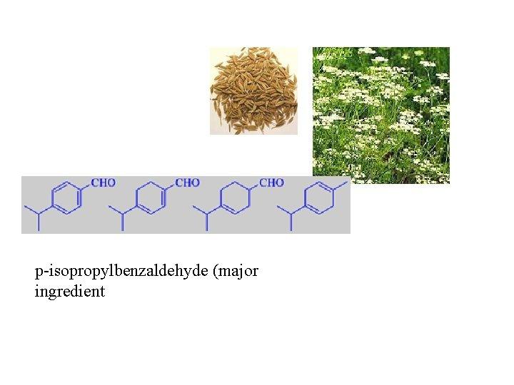p-isopropylbenzaldehyde (major ingredient