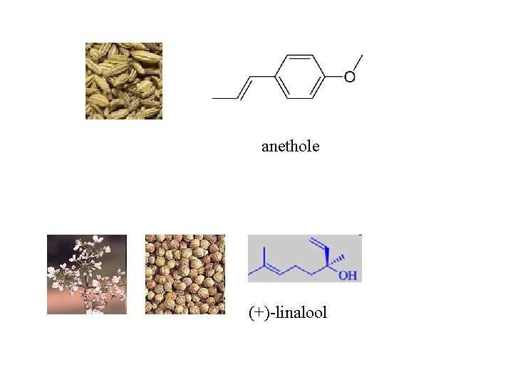 anethole (+)-linalool
