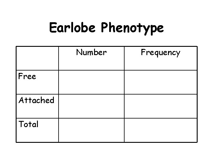 Earlobe Phenotype Number Free Attached Total Frequency