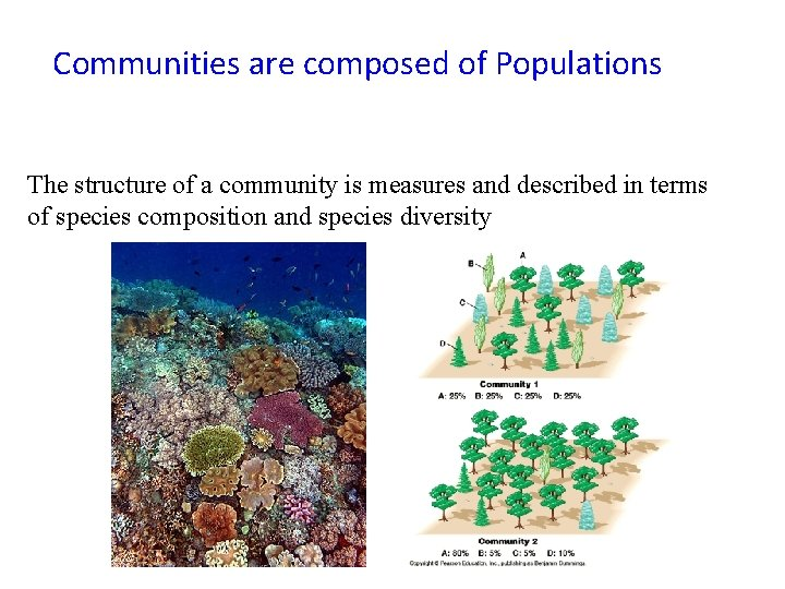 Communities are composed of Populations The structure of a community is measures and described
