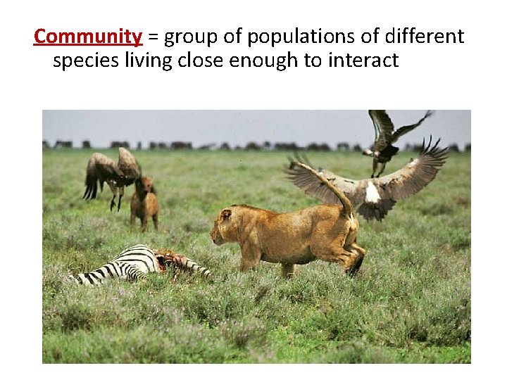 Community = group of populations of different species living close enough to interact