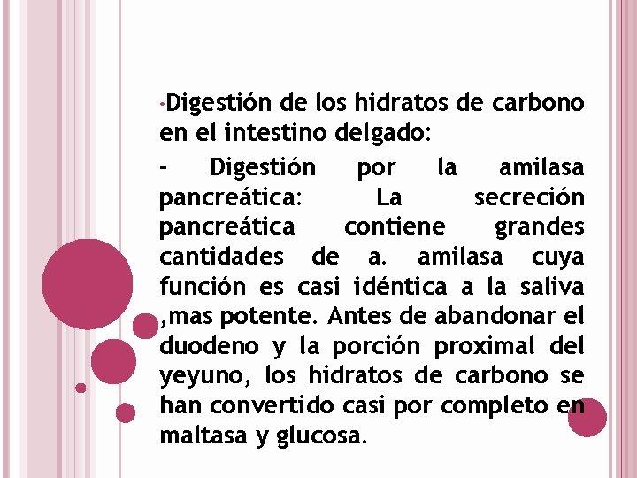 • Digestión de los hidratos de carbono en el intestino delgado: Digestión por