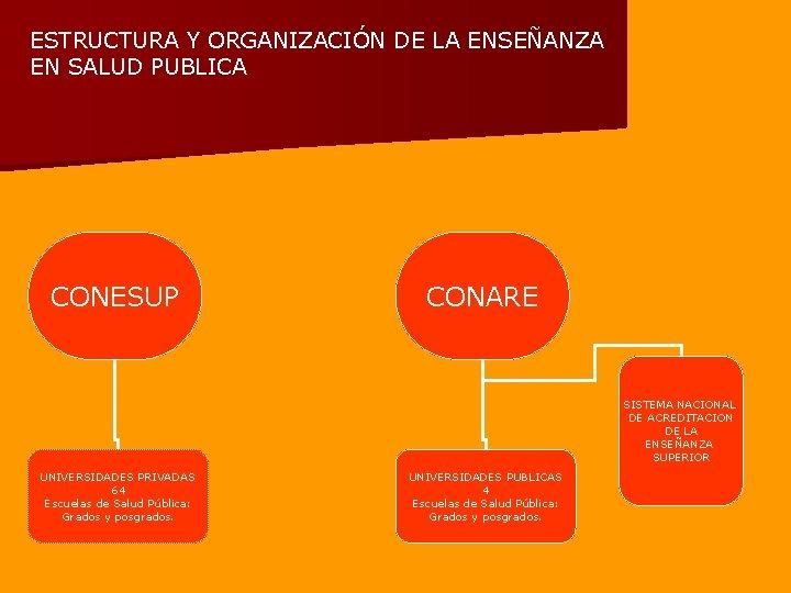 ESTRUCTURA Y ORGANIZACIÓN DE LA ENSEÑANZA EN SALUD PUBLICA CONESUP CONARE SISTEMA NACIONAL DE