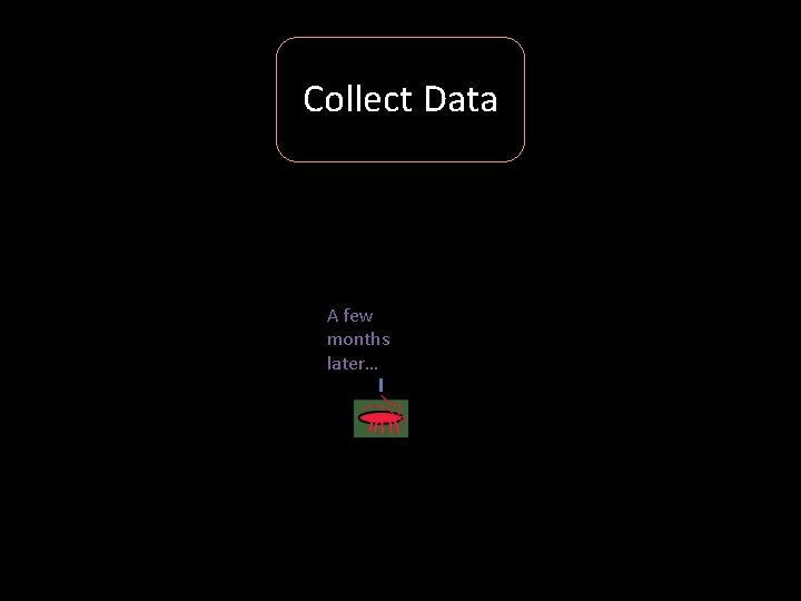 Collect Data A few months later…