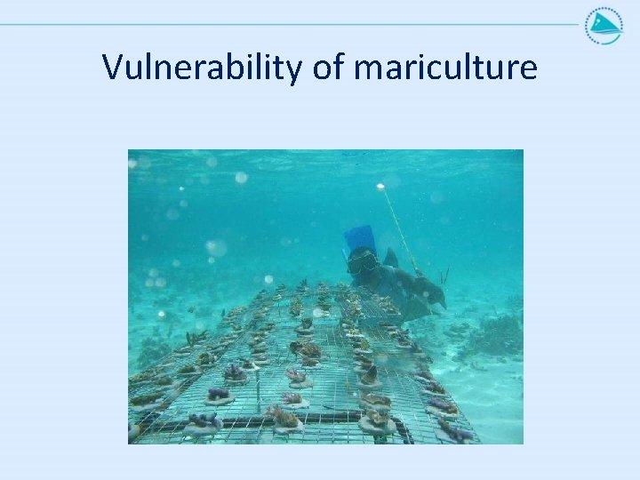 Vulnerability of mariculture