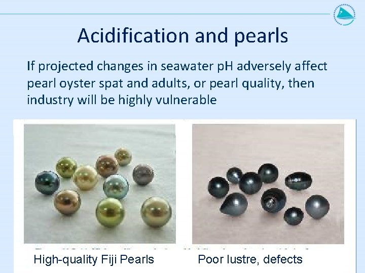 Acidification and pearls If projected changes in seawater p. H adversely affect pearl oyster