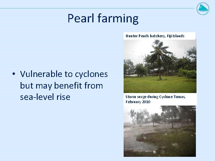Pearl farming Hunter Pearls hatchery, Fiji Islands • Vulnerable to cyclones but may benefit