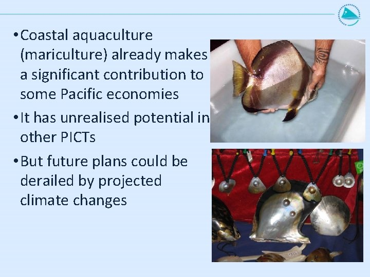 • Coastal aquaculture (mariculture) already makes a significant contribution to some Pacific economies