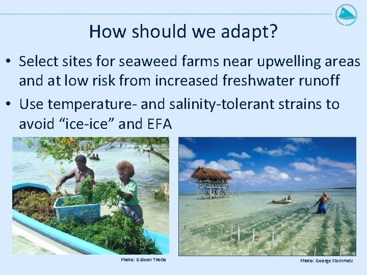 How should we adapt? • Select sites for seaweed farms near upwelling areas and