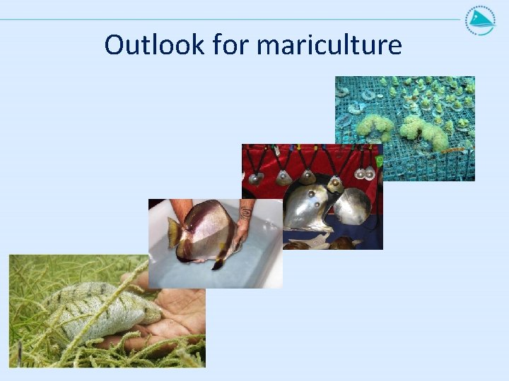 Outlook for mariculture