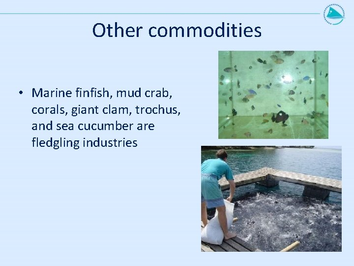 Other commodities • Marine finfish, mud crab, corals, giant clam, trochus, and sea cucumber