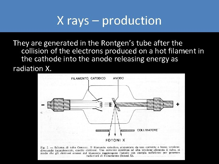 X rays – production They are generated in the Rontgen's tube after the collision