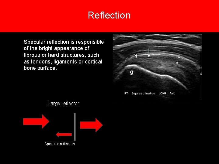 Reflection 6. Types of reflections Specular reflection is responsible of the bright appearance of