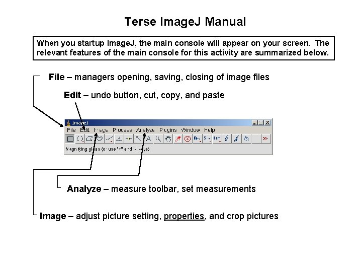 Terse Image. J Manual When you startup Image. J, the main console will appear