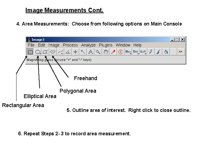 Image Measurements Cont. 4. Area Measurements: Choose from following options on Main Console Freehand