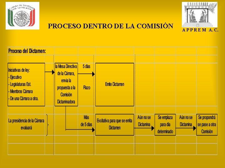 PROCESO DENTRO DE LA COMISIÓN A P P R E M A. C.
