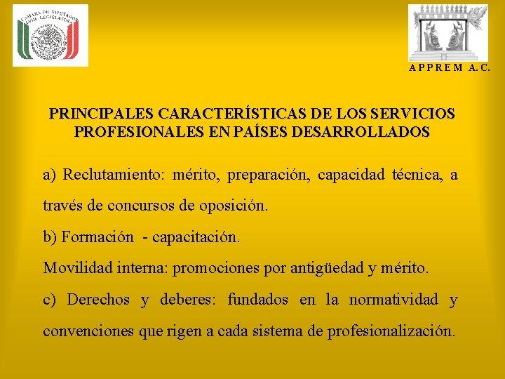 A P P R E M A. C. PRINCIPALES CARACTERÍSTICAS DE LOS SERVICIOS PROFESIONALES
