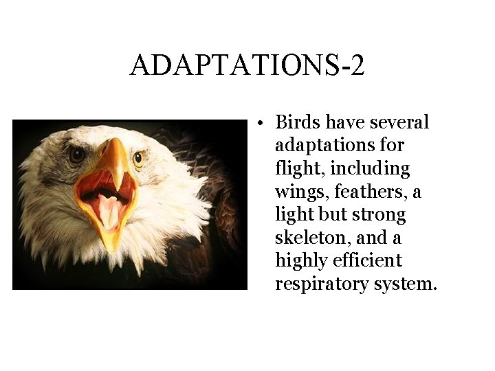 ADAPTATIONS-2 • Birds have several adaptations for flight, including wings, feathers, a light but