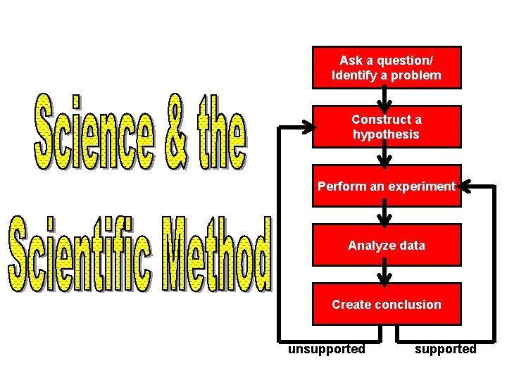 Ask a question/ Identify a problem Construct a hypothesis Perform an experiment Analyze data