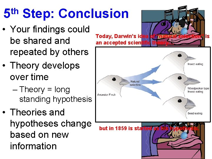 5 th Step: Conclusion • Your findings could be shared and repeated by others
