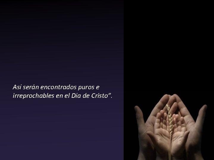 """Así serán encontrados puros e irreprochables en el Día de Cristo""""."""