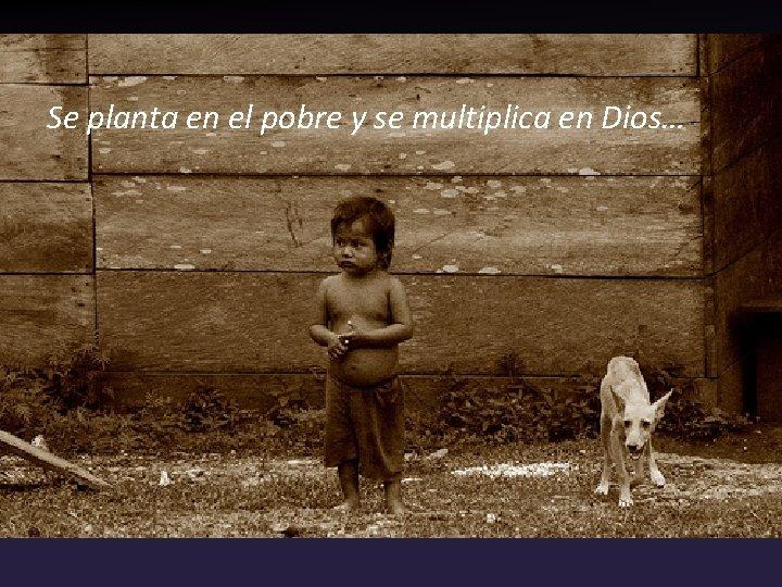 Se planta en el pobre y se multiplica en Dios…