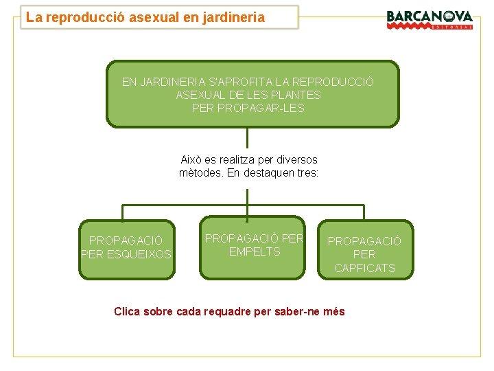 UNITAT La reproducció asexual en jardineria 4 EN JARDINERIA S'APROFITA LA REPRODUCCIÓ ASEXUAL DE