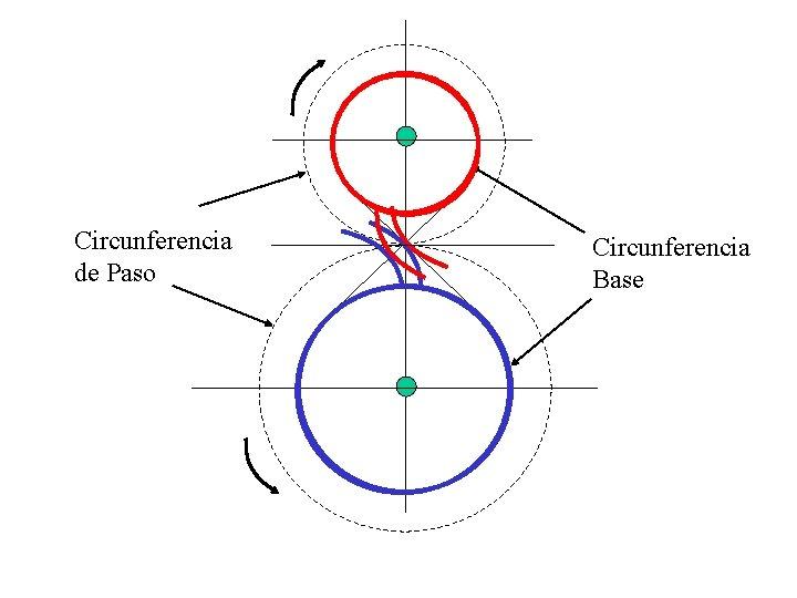 Circunferencia de Paso Circunferencia Base