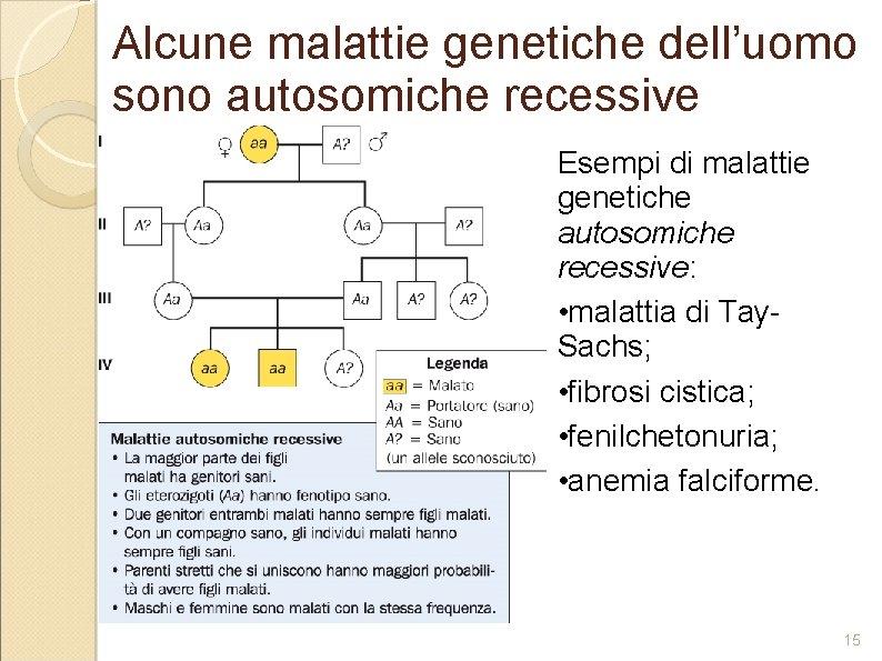 Alcune malattie genetiche dell'uomo sono autosomiche recessive Esempi di malattie genetiche autosomiche recessive: •