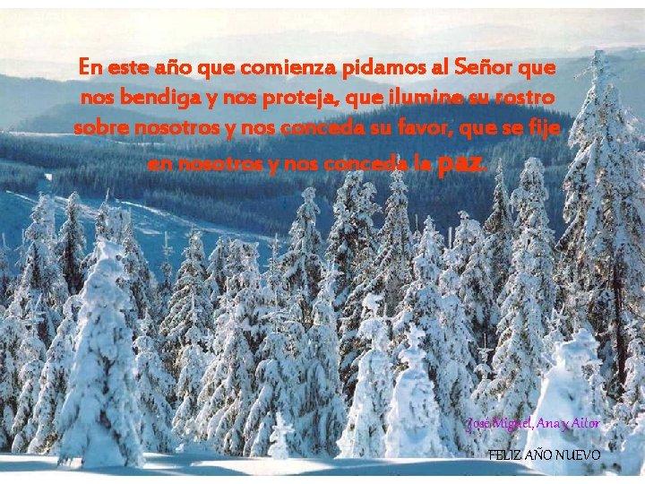 En este año que comienza pidamos al Señor que nos bendiga y nos proteja,