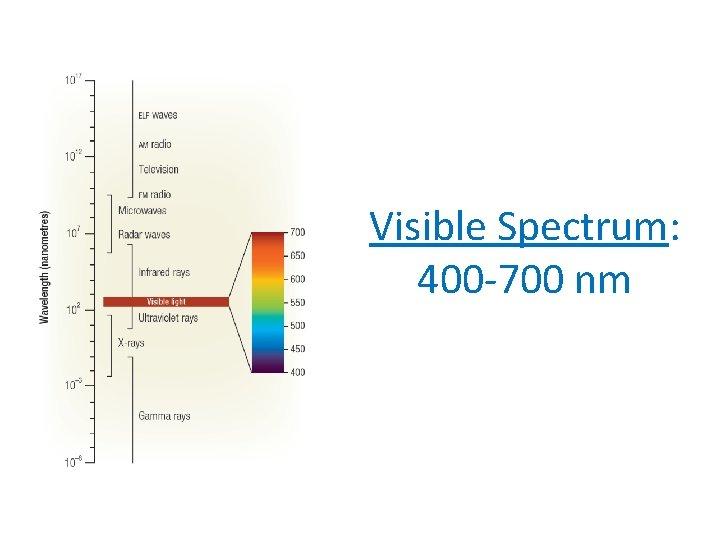 Visible Spectrum: 400 -700 nm