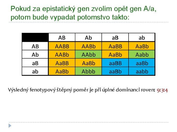 Pokud za epistatický gen zvolím opět gen A/a, potom bude vypadat potomstvo takto: Výsledný