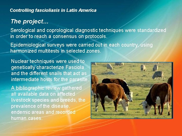 Controlling fascioliasis in Latin America The project… Serological and coprological diagnostic techniques were standardized