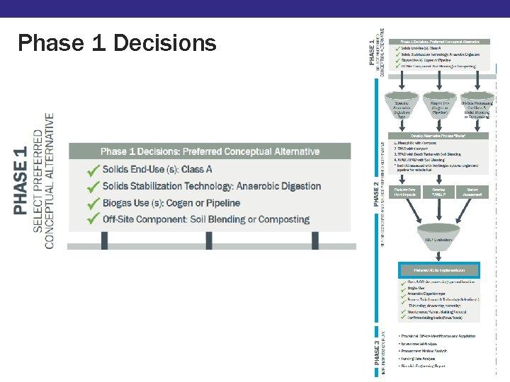 Phase 1 Decisions Market Assessment