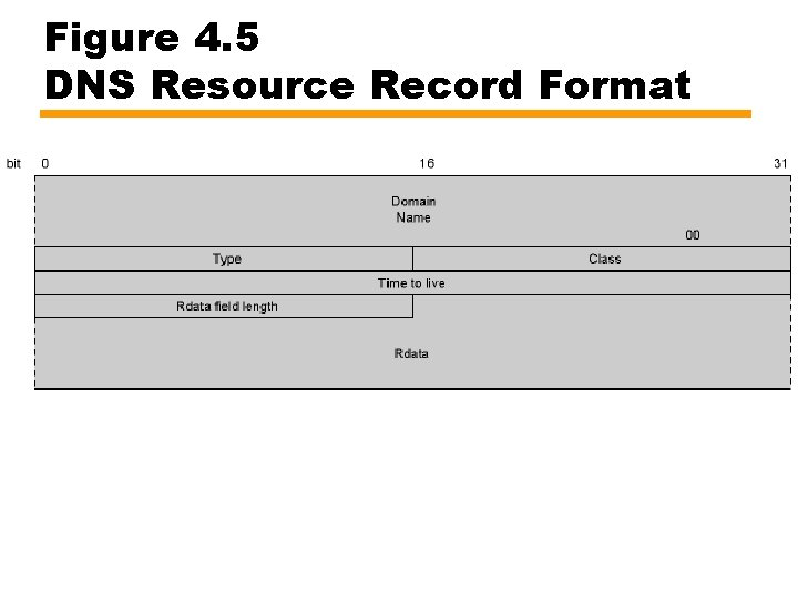 Figure 4. 5 DNS Resource Record Format