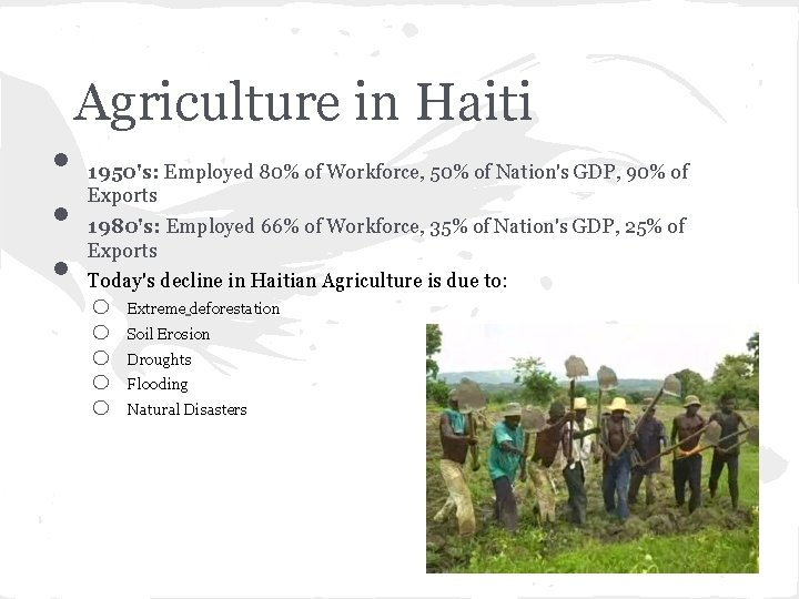 • • • Agriculture in Haiti 1950's: Employed 80% of Workforce, 50% of