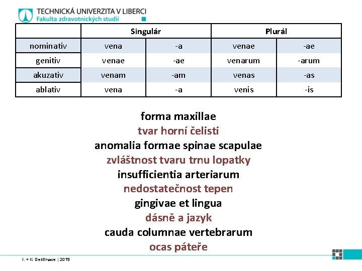 Singulár Plurál nominativ vena -a venae -ae genitiv venae -ae venarum -arum akuzativ venam