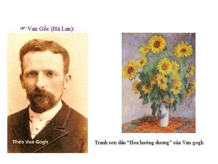 """Van Gốc (Hà Lan): Tranh sơn dầu """"Hoa hướng dương"""" của Van gogh"""