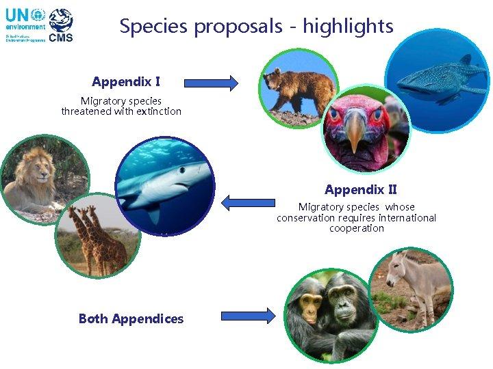 Species proposals - highlights Appendix I Migratory species threatened with extinction Appendix II Migratory