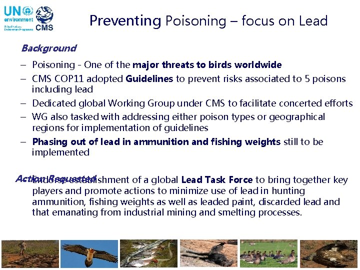 Preventing Poisoning – focus on Lead Background - Poisoning - One of the major