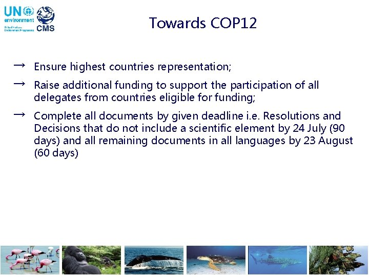 Towards COP 12 → Ensure highest countries representation; → Raise additional funding to support
