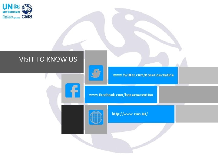 VISIT TO KNOW US www. twitter. com/Bonn. Convention www. facebook. com/bonnconvention http: //www. cms.