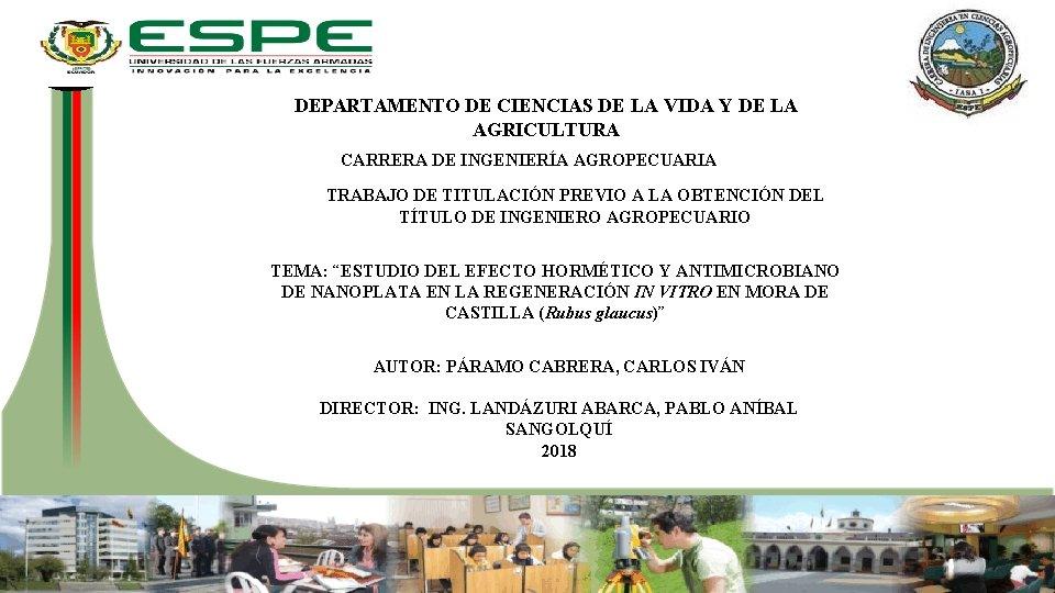 DEPARTAMENTO DE CIENCIAS DE LA VIDA Y DE LA AGRICULTURA CARRERA DE INGENIERÍA AGROPECUARIA