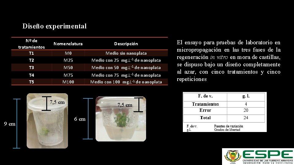 Diseño experimental Nº de tratamientos T 1 T 2 Nomenclatura Descripción M 0 M