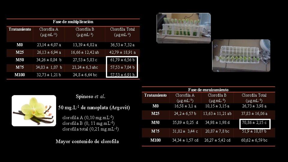 Fase de multiplicación Tratamiento Clorofila A (µg. m. L-1) Clorofila B (µg. m. L-1)