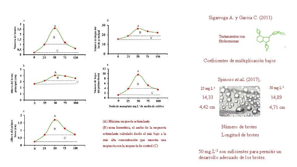 Sigarroga A. y Garcia C. (2011) Tratamientos con fitohormonas Coeficientes de multiplicación bajos Spinoso