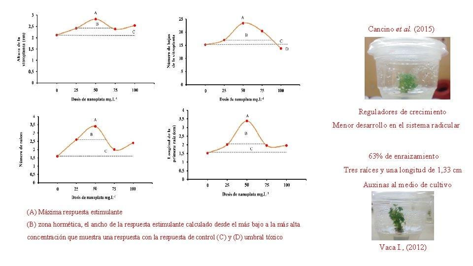 Cancino et al. (2015) Reguladores de crecimiento Menor desarrollo en el sistema radicular 63%